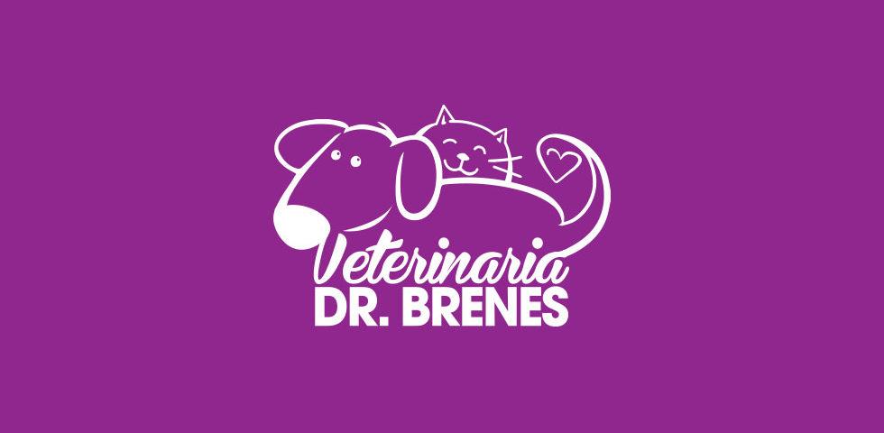 Veterinaria Dr. Brenes